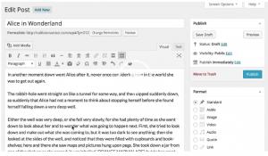"Wordpress 4.0 ""Benny"" texteditor"